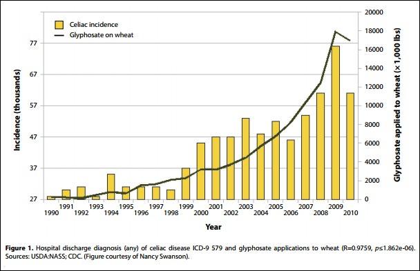 celiac-incidence-as-a-factor-of-glyphosate-application-to-wheat.jpg